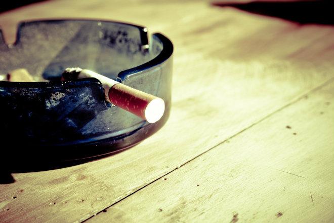 cigarette sante animal