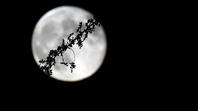 pleine-lune-las-vegas