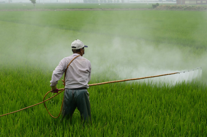 pesticides france