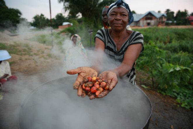 huile palme petits producteurs