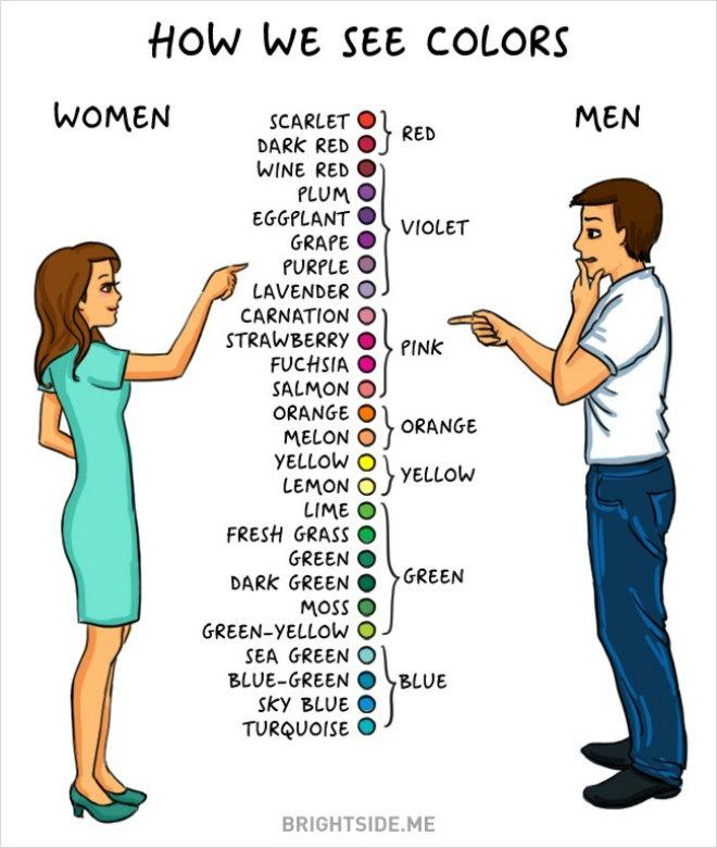 homme femme couleurs