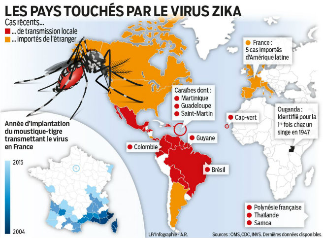 virus zika cartograpie