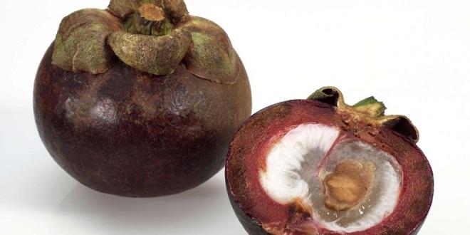 mangoustan-calculs-renaux